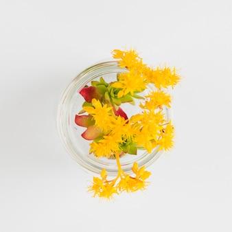 Vista superior flores en jarrón de cristal