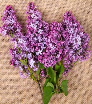 Vista superior de flores lilas aisladas sobre fondo de textura de tela de saco
