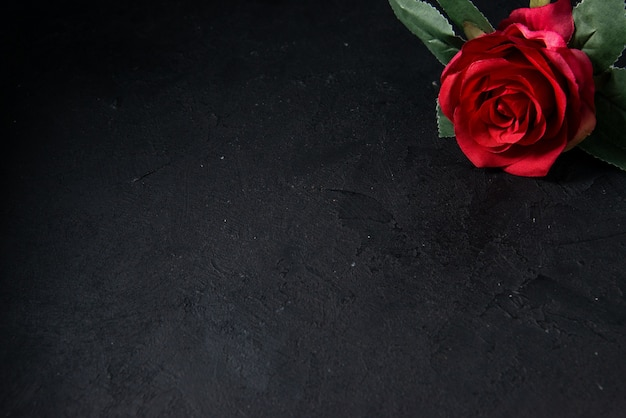 Vista superior de flores rojas en la oscuridad