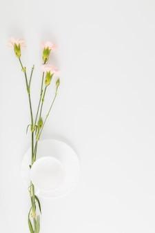Vista superior flores y taza