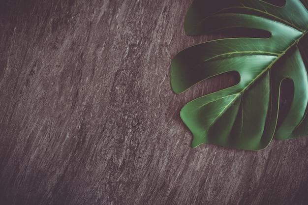 Vista superior del fondo abstracto de textura de mármol de tono negro gris oscuro con hoja verde natural como marco.
