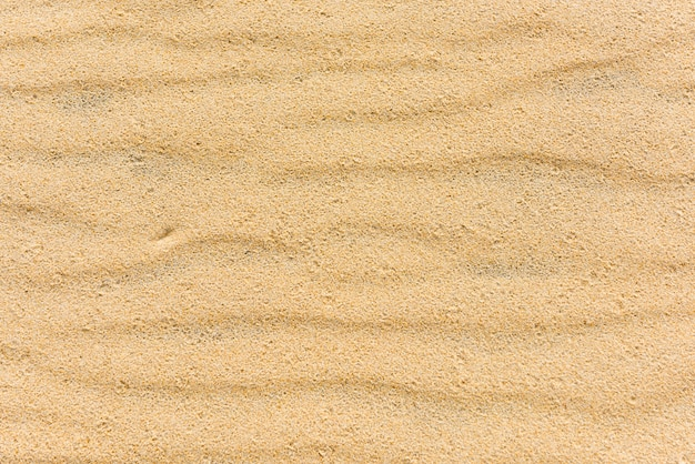 Vista superior de un fondo marino de arena