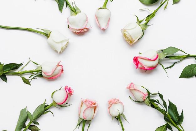 Vista superior forma de rosas