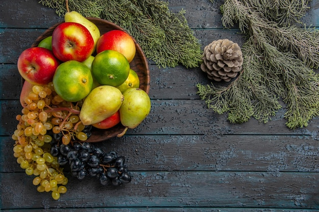 Vista superior de frutas y ramas uvas blancas y negras limas peras manzanas en un tazón junto a ramas de abeto en superficie gris
