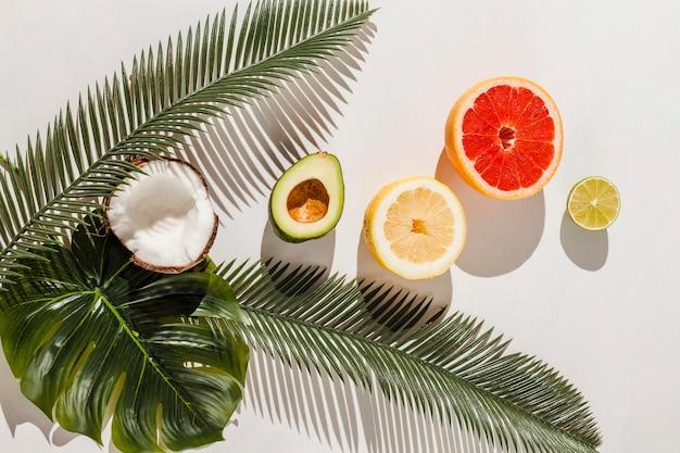Vista superior de frutas sobre fondo blanco