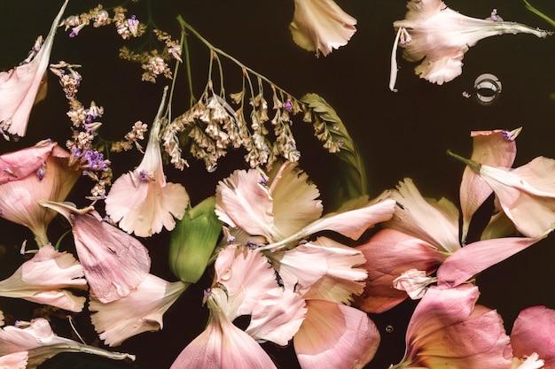 Vista superior hermosas flores rosadas en aguas negras