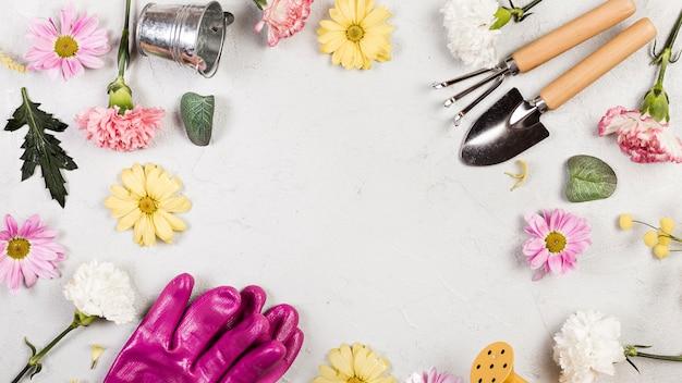 Vista superior de herramientas de jardinería y plantas