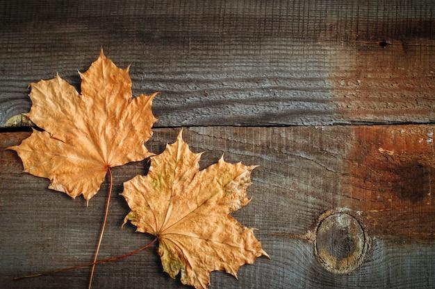 Vista superior de hojas de arce sobre fondo de otoño de tableros de madera