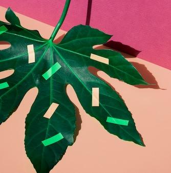 Vista superior de hojas de castaño y artículos de papelería sobre fondo contrastado