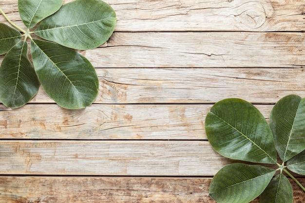 Vista superior de hojas con espacio de copia