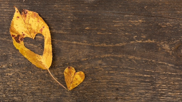 Vista superior de hojas en forma de corazón sobre fondo de madera