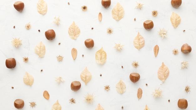 Vista superior de hojas de otoño con castañas
