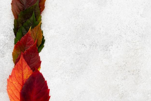 Vista superior de hojas de otoño coloreadas con espacio de copia