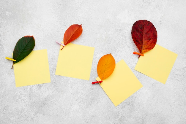 Vista superior de hojas de otoño coloreadas con notas adhesivas
