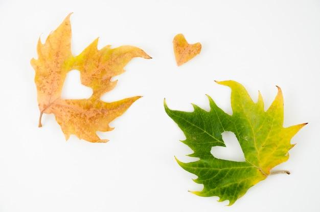 Vista superior hojas de otoño con corazón