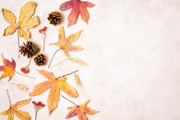 Vista superior de hojas de otoño con piñas y espacio de copia