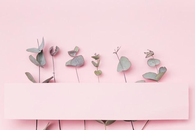 Vista superior de hojas sobre fondo rosa con papel en blanco