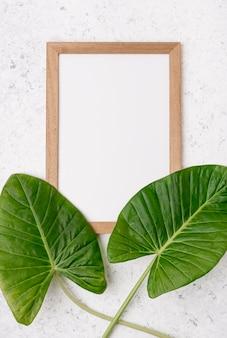 Vista superior de hojas vívidas con marco