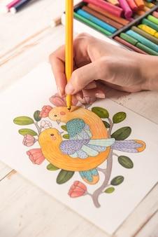 Vista superior de la imagen dibujada con marcadores en papel