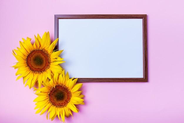 Vista superior de la imagen plana con blanco limpio en blanco