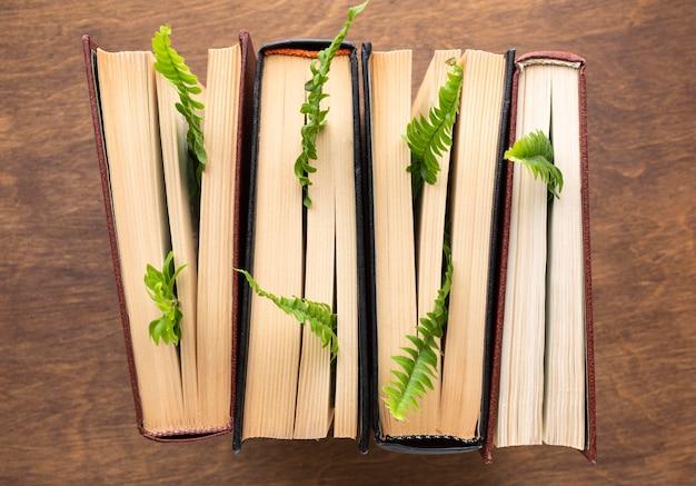 Vista superior de libros y arreglo de plantas.