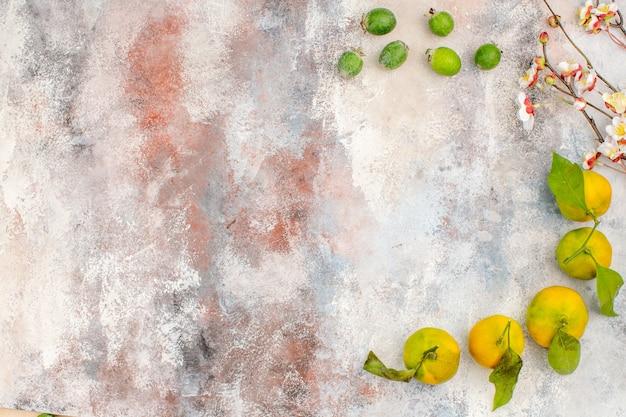 Vista superior de mandarinas frescas feykhoas rama de flor de albaricoque sobre fondo desnudo