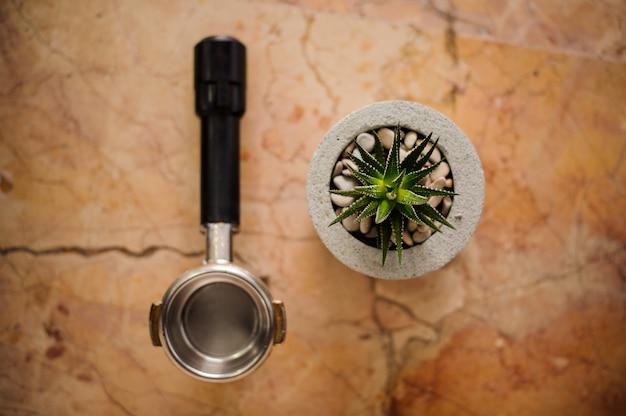 Vista superior de la manipulación de café y maceta de hormigón con una planta de aloe