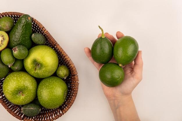 Vista superior de la mano femenina sosteniendo limas frescas con un balde de frutas frescas como manzanas, feijoas y aguacate sobre una superficie blanca