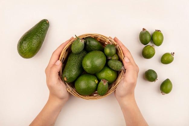 Vista superior de manos femeninas sosteniendo un balde de frutas frescas como limas feijoas con feijoas y aguacates aislado sobre una superficie blanca