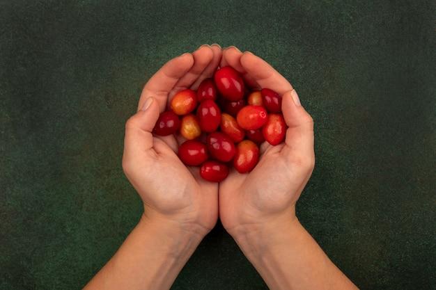 Vista superior de manos femeninas sosteniendo cerezas de cornalina ácida rojo pálido sobre una superficie verde