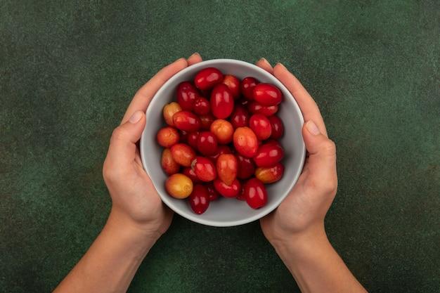 Vista superior de manos femeninas sosteniendo un tazón de cerezas de cornalina rojas frescas sobre una superficie verde