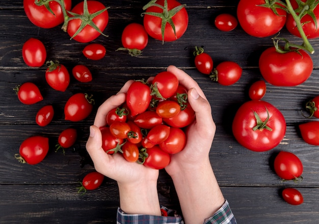 Vista superior de manos de mujer sosteniendo tomates con otros en mesa de madera