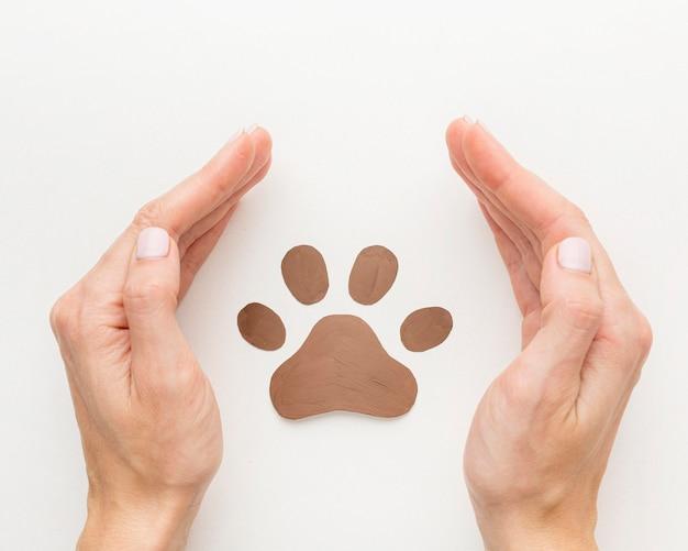 Vista superior de las manos protegiendo la huella de la pata para el día de los animales