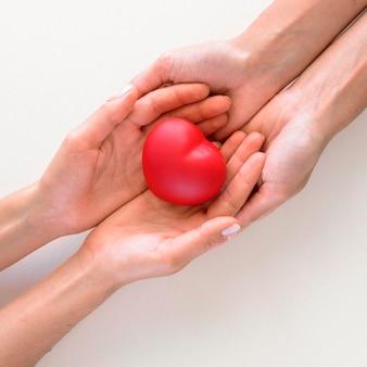 Vista superior de manos sosteniendo con cuidado en forma de corazón