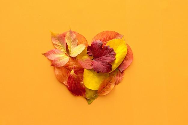 Vista superior, maqueta plana de otoño caída con forma de corazón de composición decorativa