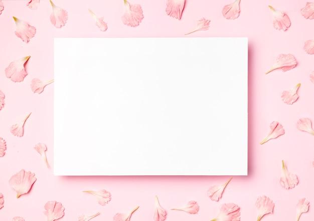 Vista superior marco blanco sobre fondo rosa