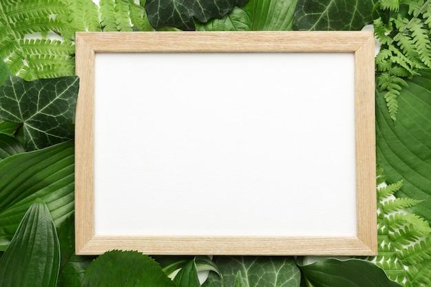 Vista superior del marco con concepto de hojas