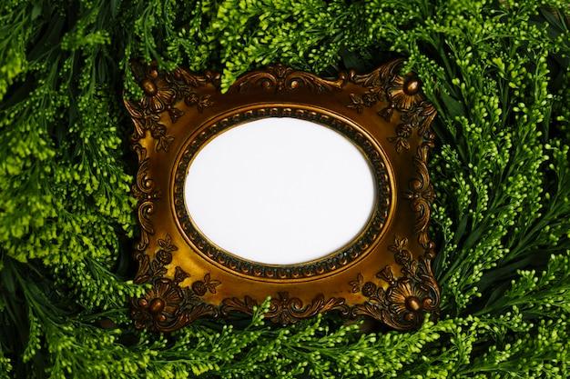 Vista superior marco entre hojas