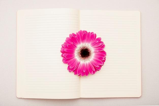 Vista superior margarita rosa en el cuaderno