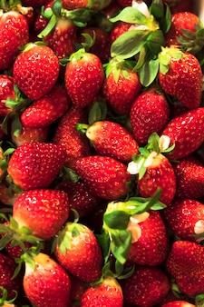 Vista superior montón de fresas rojas