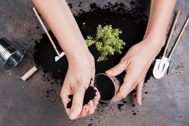 Vista superior de la mujer poniendo tierra en balde