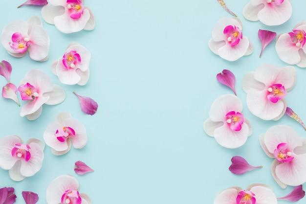 Vista superior de orquídeas rosadas con espacio de copia