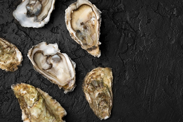 Vista superior de ostras en pizarra con espacio de copia