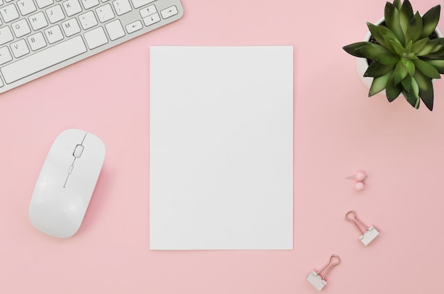 Vista superior de papel en blanco con ratón y suculenta
