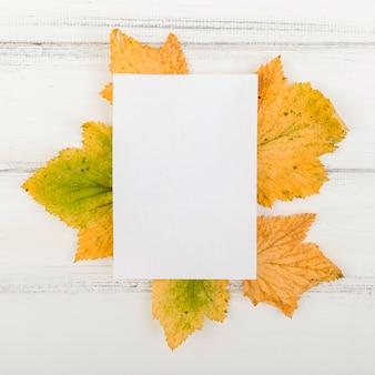 Vista superior de papel en blanco sobre hojas con maqueta