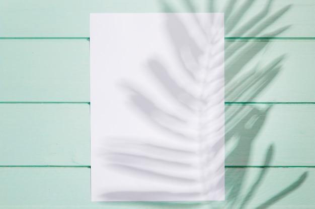 Vista superior de papel blanco vacío y hojas de sombra