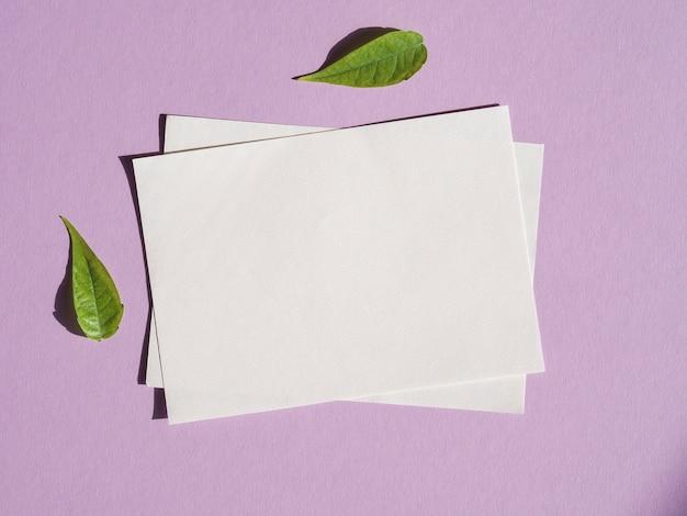 Vista superior de papeles en blanco con hojas verdes