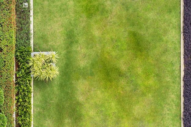 Vista superior del parque, textura de césped natural