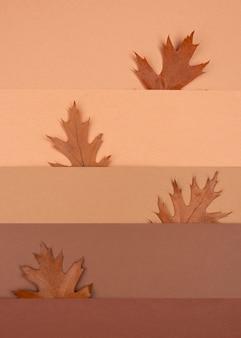 Vista superior del patrón monocromático y hojas.