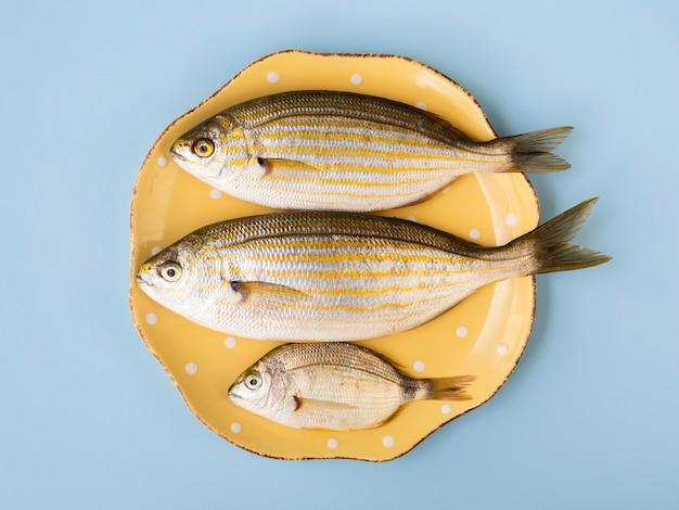 Vista superior de pescado crudo fresco en placa